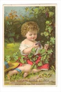 TC  Baby picks grapes, NIAGARA GLOSS STARCH, 1890s