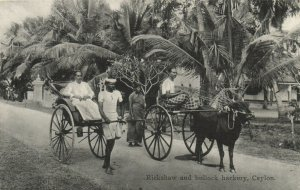 PC CPA SRI LANKA, CEYLON, RICKSHAW AND BULLOCK HACKERY, Postcard (b13653)