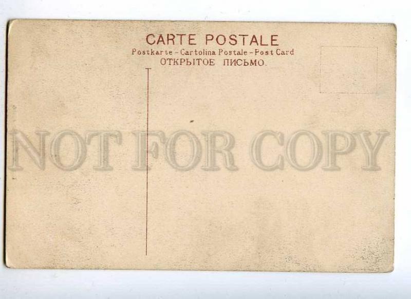 191327 SINGAPORE Retelnut Tree Vintage postcard