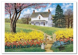 Red CAT in Garden near Cottage RUSTIC Village Life Landscape Russian Postcard