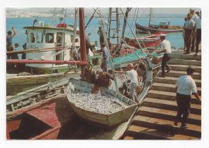 Portugal Algarve Sardine Fishing Boats Vila Real de Santo Antonio Postcard 4X6