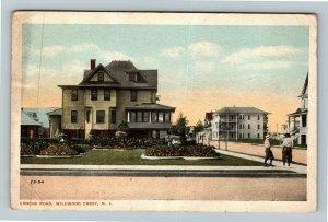 Wildwood Crest NJ-New Jersey Crocus Road Vintage c1917 Postcard