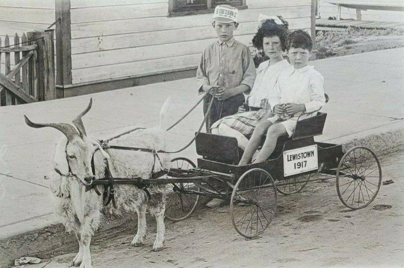 1917 RPPC Postcard Lewistown Kids goat Pulled cart Star Clothing Co Ad