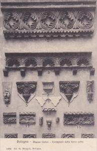 BOLOGNA, Emilia-Romagna, Italy, 1900-1910´s; Museo Civico, Esemplari Delle T...