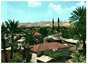 City of Palms Jericho Palestine West Bank Postcard 4 x 6