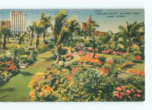 Linen PARK SCENE Miami Florida FL c8736