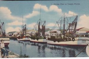 Florida Tampa Shrimp Fleet Curteich
