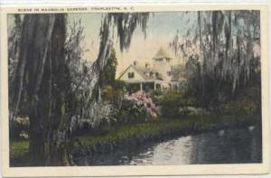 Scene in Magnolia Gardens , Charleston, South Carolina, 00-10s