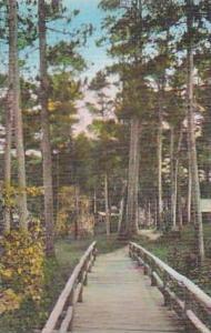Minnesota Itasca State Park Rustic Bridge Douglas Lodge Albertype