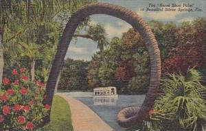 Florida Sliver Spring The Horse Shoe Palm Curteich