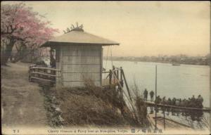 Tokyo Japan Ferry Boat at Mukojima c1910 Hand Colored Postcard