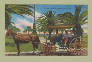 Linen Post Card Ft. Augustine Florida Horse and Buggy Surry