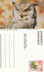 South West Africa (SWA) now Namibia ; Giant Eagle Owl , 40-60s