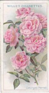 Wills Vintage Cigarette Card Roses A Series 1912 No 12 Georges Pernet