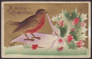 Merry Christmas,Robin,Holly Postcard