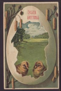 Easter Greetings,Chicks,Scene Postcard