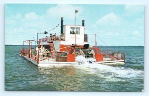 Postcard MN Bemidji The Bemidji Bell Stern Wheeler Ship H15