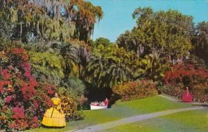 Florida Cypress Gardens Tropical Scene