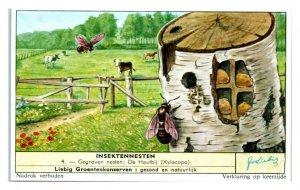 Carpenter Bees Dug Nests, Insektennesten Liebig Belgian Trade Card *VT28E