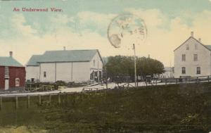 An Underwood View , Bruce , Ontario , 1921