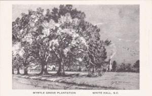 Myrtle Grove Plantation, White Hall, South Carolina,  00-10s