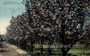 Fruit Orchard - Grand Junction, Colorado CO
