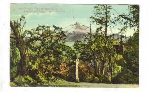Volcan Popocatepeti , Mexico, 00-10s