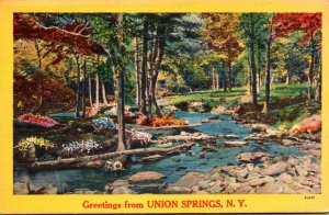 New York Greetings From Union Springs