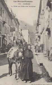 Pyrenees Barages French Donkey Mule Poverty Paulette Rare Repro France Postcard