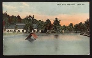 State Fish Hatchery Corry Pa 1911 F.M. Kirby & Co