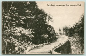 Bear Mountain State Park New York~Narrow Park Road Approaches Park~c1910 B&W
