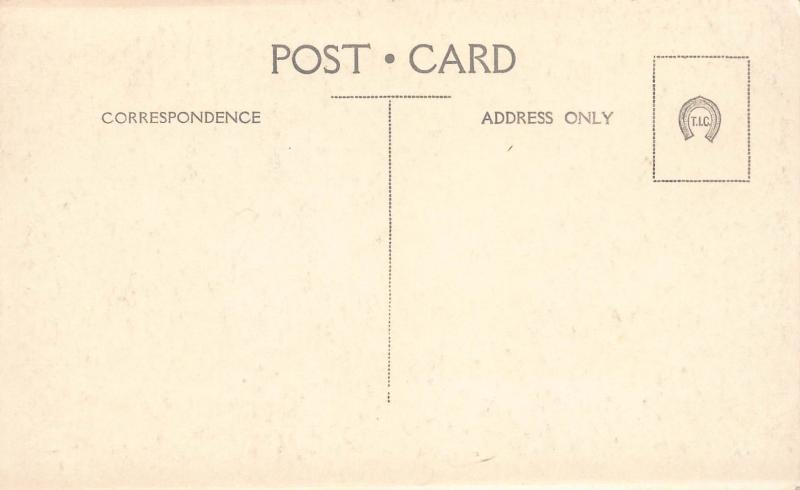 Rotorua, New Zealand, Early Real Photo Postcard, Unused