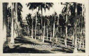 Coconut Plantation Singapore Unused