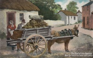 Sod wagon, Ireland , 1900-10s ; Black Turf! Black Turff! Twelve sods a penny