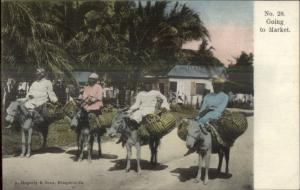Jamaica Black Women Going to Market c1905 Hand Colored Postcard EXC COND