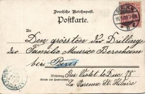 south africa, TRANSVAAL Ausstellung Expo, Ostrich Farm (1900) Postcard