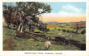Warren Maine Sheep Pasture Greeting Antique Postcard K93201