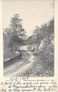 Coon Rock Hill Wurtsboro NY 1907