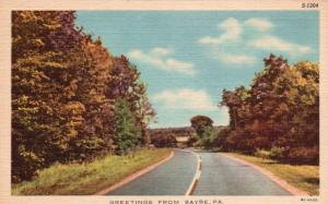 Greetings from Sayre, Pennsylvnia, PA, Wooded Road, Linen Vintage Postcard f1174