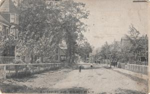 MILFORD, Connecticut , 1910 ; Waterbury Avenue, Walnut Beach