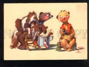 047252 Funny TEDDY BEAR & Toy Terrier old Comic