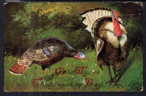 Thanskgiving Turkeys BIN