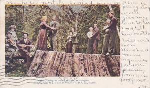 Dancing On Stump Of Giant Tree Washington 1908