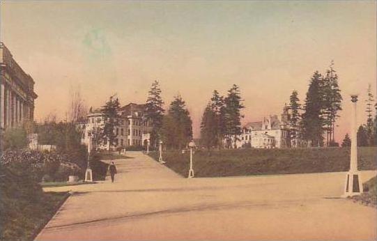 Washington Seattle Campus Scene University Of Washington Albertype