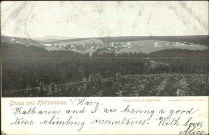 Gruss Aus Hahnenklee Germany 1902 Used Postcard