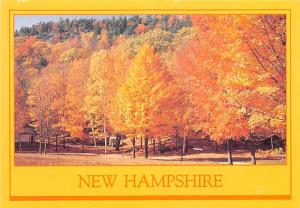 Fall Foliage - Woodstock, New Hampshire