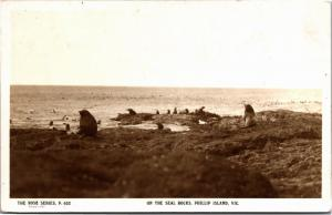 Rose Series P 652, On the Seal Rocks, Phillip Island Victoria Vtg Postcard M03