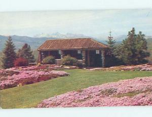 Pre-1980 BOTANICAL SCENE Wenatchee Washington WA HJ6856
