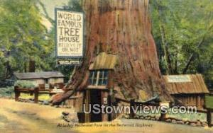 Lilley Redwood Park