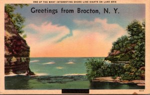New York Greetings From Brocton